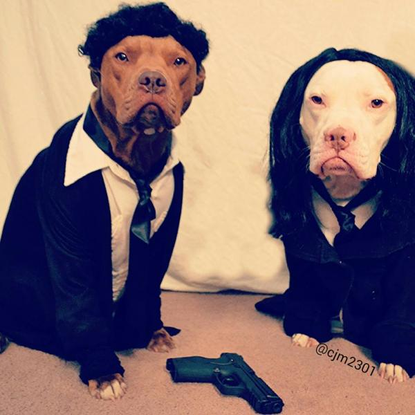 pulp-fiction-dogs