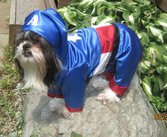 captain-america-dog