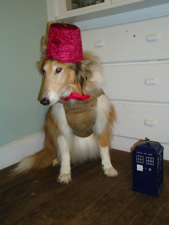 sable-as-the-11th-doctor