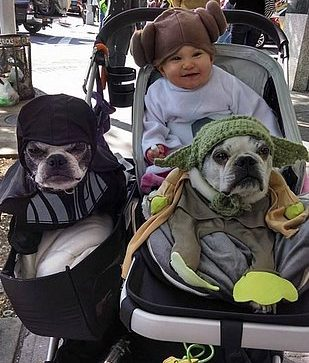 star-wars-day-out