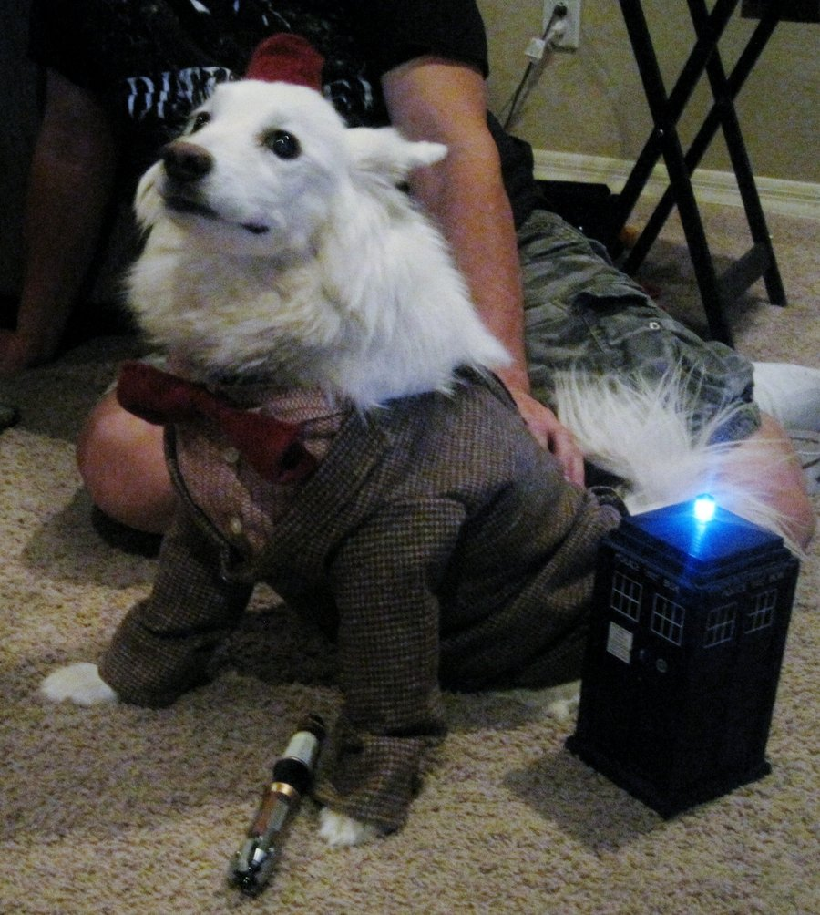 doctor_who_dog