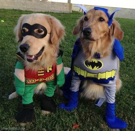 Batman-And-Robin-Dogs