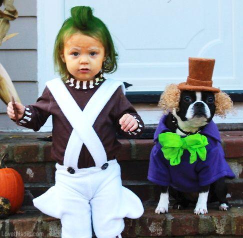 Willy Wonka Dog