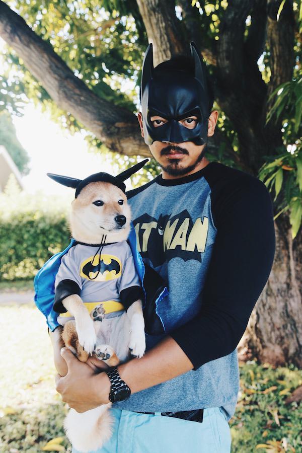 batdog-and-pet
