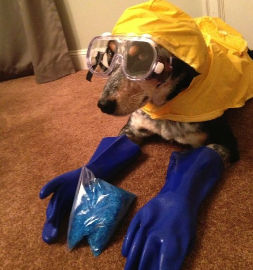 Breaking Bad woof